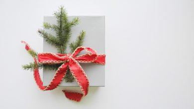 Photo of Les conseils de cadeaux de Noël Littéraires 2019 #05