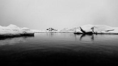 Photo de «Un monde sans rivage» et les témoins des conquêtes du monde