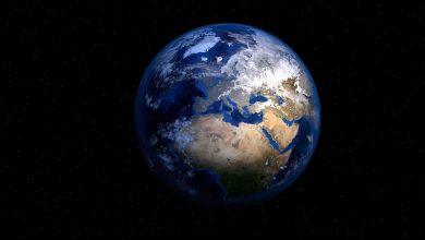 Photo of «10 idées reçues sur l'écologie»: distinguer le vrai du faux