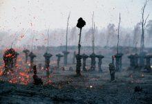 Photo de Parfum d'apocalypse et amour maternel : l'alchimie d'Astrid Monet