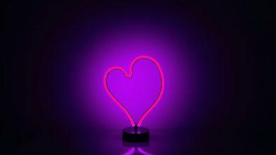Photo de Le cœur synthétique, les rythmes sensibles du célibat